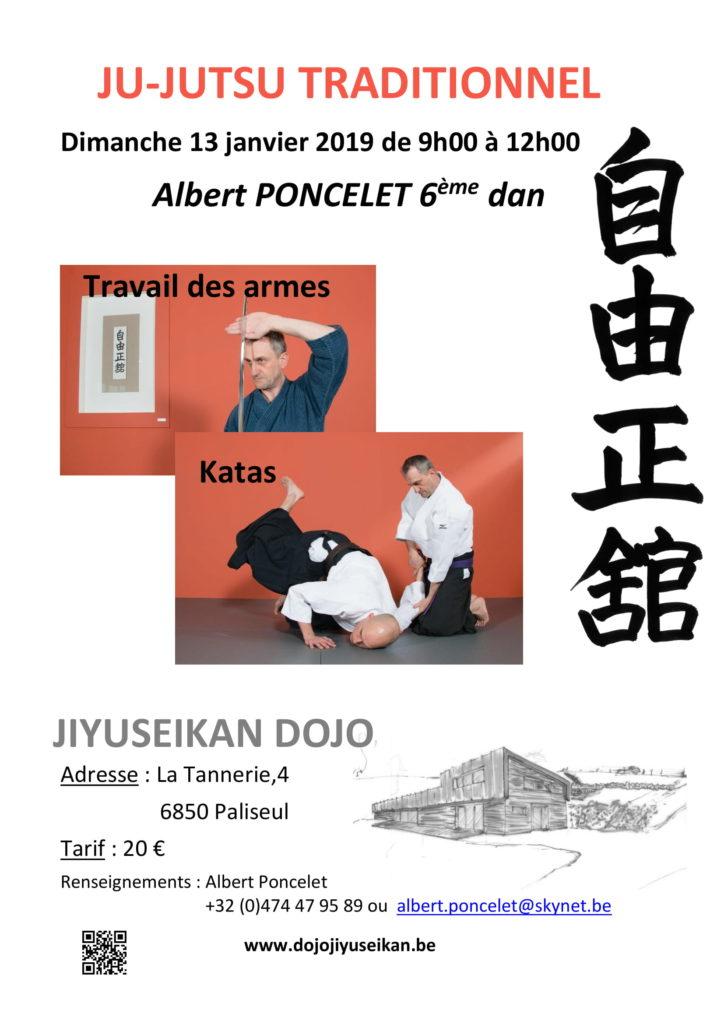 Stage Kata et Armes @ Jiyuseikan Dojo